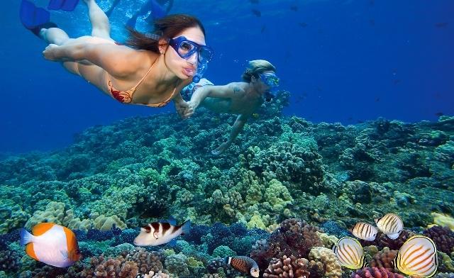 Nha Trang Fishing and Snorkeling Tours